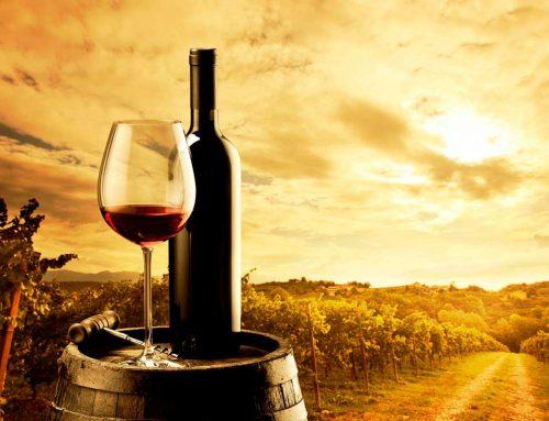 Куда отправиться за наслаждением любителю вина