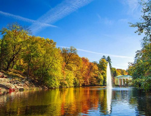 Осенние краски Софиевки